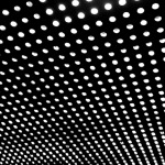 beach house bloomcover